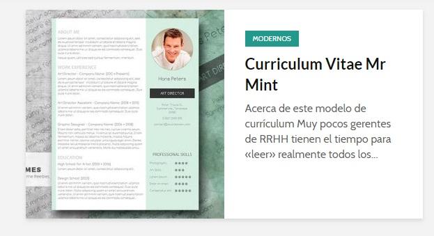curriculum vitae on line